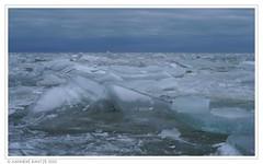 Gouwzee (Hanneke Bantje) Tags: winter holland ice nederland hanneke ijs schaatsen ijspret gouwzee photocurious kruiendijs hannekebantje