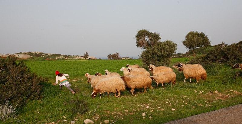 В посёлке Liveras на одной из окраин Кипра