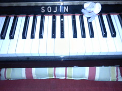 sojini by amadeusmusicinstruction
