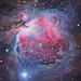 AstrobiologÍa: vida entre las estrellas