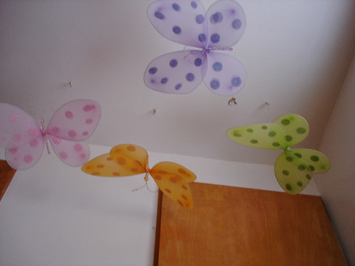 Lily's butterflies