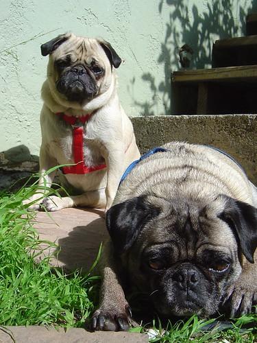 Otto & Maggie