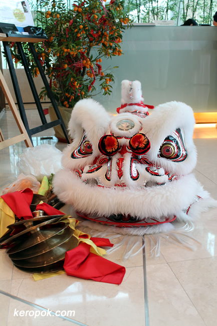 Head of the Lion from the Lion Dance