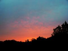 Solar Plexus (Jason A. Samfield) Tags: pink blue trees light red cloud sun tree silhouette clouds contrast sunrise dark solar twilight glow texas purple glory azure violet silhouettes gradient glowing sanmarcos sunrises february hillcountry treeline shrubs magnificent paleblue valentinesday pinkish shrubbery purplish skyblue helios reddish blueish bluish plexus texashillcountry lightpurple solarplexus heliocentric sunriseglory