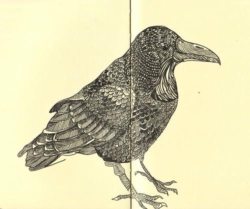 Raven_0001