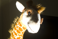 Art 207 - Assignment 7.3 - Still Life - Sinister Giraffe 3