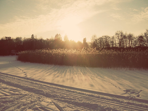 Sundown in winter mood