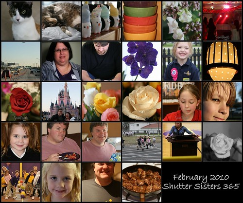 Mosaic Feb 2010 Shutter Sisters