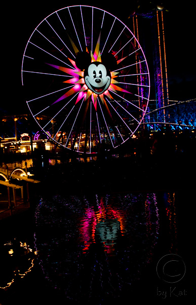Mickey at Night