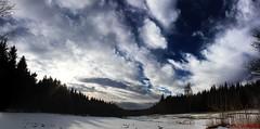 WINTER wont go away (Jakob Winkler) Tags: trees sun clouds forest canon wolken sonne wald bume abigfave eos500d jakobwinkler