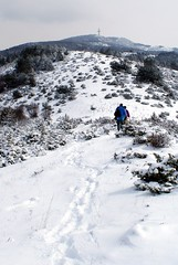along the crest (kosova cajun) Tags: winter mountain snow landscape hiking macedonia balkans skopje milleniumcross makedonija vodno peisazh shkupi shkup southeasterneurope maqedonia