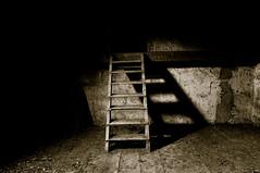 up into the shadows, but fallen into a triangle (mav_at) Tags: urban abandoned stairs barn photography austria photo sterreich foto fotografie empty leer exploring treppe schatten verlassen leiter urbex scheune dreieck mavat
