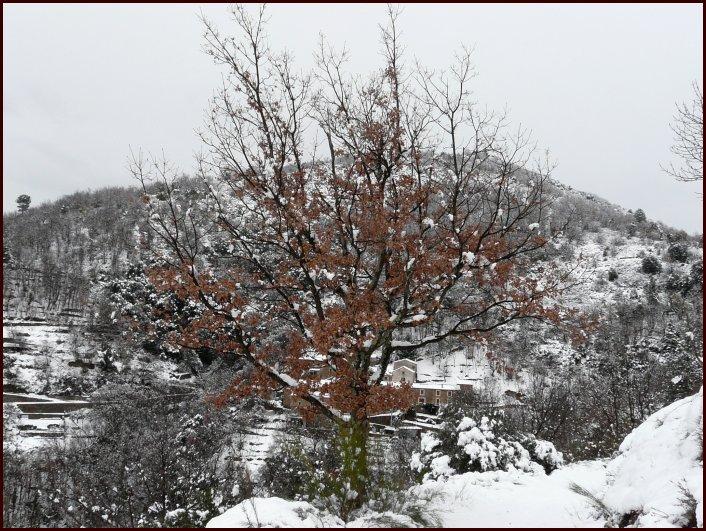 neigebis02