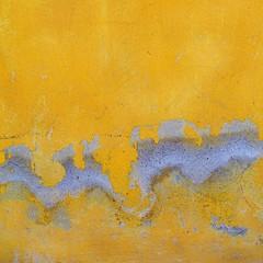 "sma wall detail #86/ ""puff"" (for simon) (msdonnalee) Tags: abstract muro yellow wall jaune mexico pared gold dragon decay giallo mexique mura minimalismo abstracto astratto mur soe parede drago mauer yellowwall mexiko abstrakt drache abstrait  drago goldwall weatheredwall  minimalisme abstractreality puffthemagicdragon minimalismus decayingwall  colorartaward artlegacy mexicanwall walldragon  photosfromsanmigueldeallende wallsofsanmigueldeallende fotosdesanmigueldeallende photosbydonnacleveland greydragon murosdesanmigueldeallende"