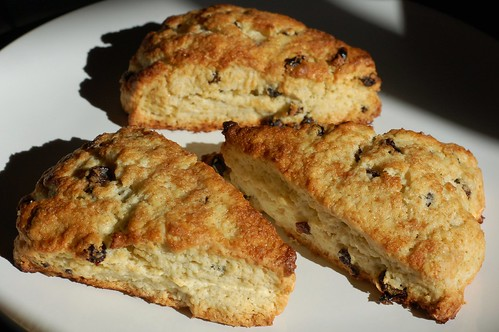 Classic Currant Scones by Eve Fox, Garden of Eating blog