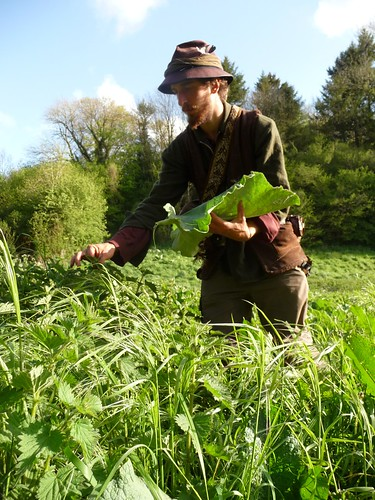 Ed gathers nettles on a burdock leaf