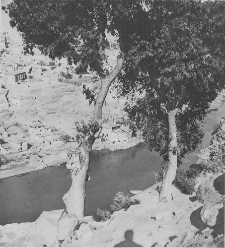 Enromes almeces de la ermita del Valle a principios del siglo XX