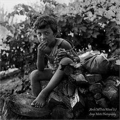 Il grappolo d'uva - The bunch of grapes (.Luigi Mirto/ArchiMlFotoWord) Tags: leica trees portrait people bw e