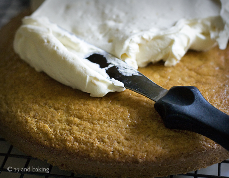 cake4wm