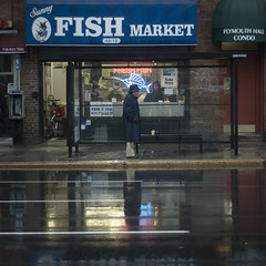 headfish. (Vitaliy P.) Tags: road street new york city fish man reflection bus wet water rain sign project square photography 50mm for nikon waiting neon boulevard market candid explore queens crop year2 365 f18 swordfish month12 project365 explored d80 vitaliyp