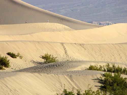 Mesquite Flat Dunes-6