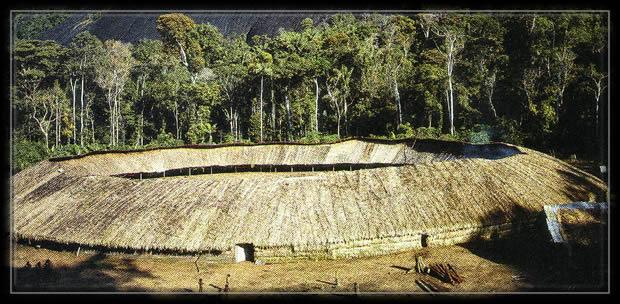 maison village,yanomami,amazonie