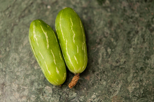 kovakkai (Ivy Gourd)