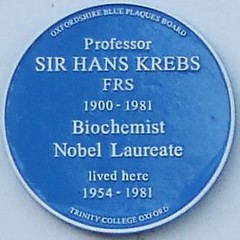Photo of Hans Krebs blue plaque