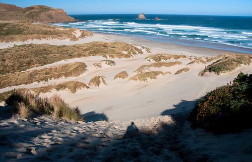 Otago Peninsula 12