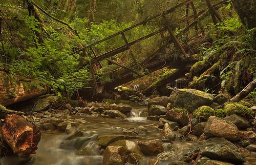 Collapsed Bridge - Mountainside Trail