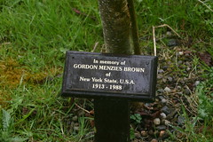 Tree in Memory of Gordon Menzies Brown of New York State USA 1913 - 1988