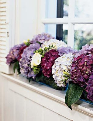 flowerbox-thebottomoftheironingbasket