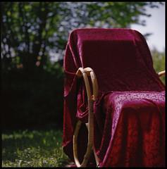 spring throne (OverdeaR [donkey's talking monkey's nodding]) Tags: 120 6x6 film grass mediumformat garden square chair lawn scan lazy bronica scanned belgrade weekends satin beograd sqa bronicasqa 10535 120roll zenzanon zenzanons10535 105mmf35s