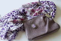 New Accessories (Candijacks) Tags: scarf necklace charlie cameo accessories charming wristlet