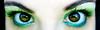 Sprite (Lady Pandacat) Tags: portrait reflection green eye self shiny colorful bright shimmery makeup vivid sprite lime browneyes 2010 catchlight fantabulous pandacat canong9 pandacatbaby tinaangel wwwcoastalscentscom coastalscents88shimmerpalette ladypandacatvonnopants