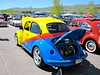 Rainbow Slug Bug!