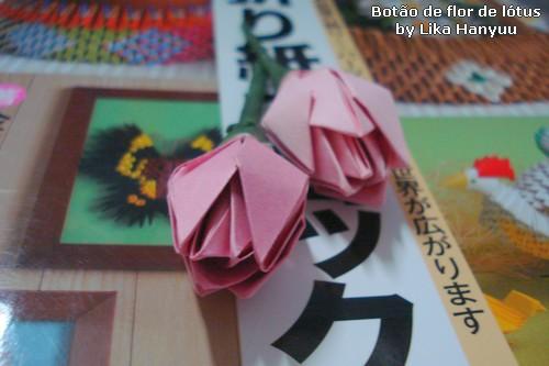 Botão - Flor de Lótus