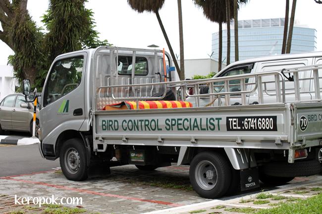 bird control specialist