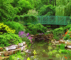 MONET GARDEN (linda yvonne) Tags: bridge rock reflections bench landscape spring pond sumac poppies kansas impressions weepingwillow phlox shrubs waterplants claudemonet publicgarden tamerisk monetgarden overlandparkarboratumandbotanicalgarden goldenfalsecypress