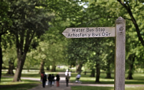Water Bus Stop in Bute Park