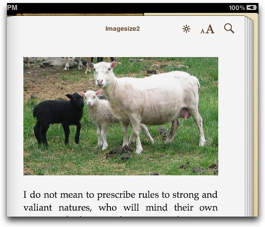 image width 100 px in iBooks