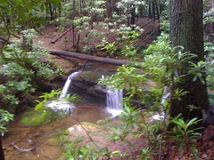 Small Falls on Town Creek