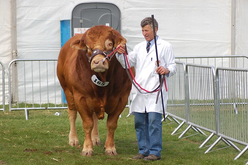 Northumberland County Show May 10 17