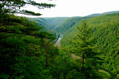 Pennsylvania Grand Canyon (amlapedalemap) Tags: creek day cloudy pennsylvania canyon gorge channel pinecreek wellsboro pennsylvaniagrandcanyon pinecreekgorge tiogastateforest grandcanyonofpennsylvania wellsboropennsylvania