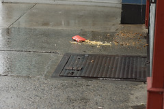 McTragedy (JenGallardo) Tags: street red food yellow grey pavement gray frenchfries mcdonalds sidewalk fries project365