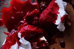 DSC_0423 [psp] - Crimson Tide