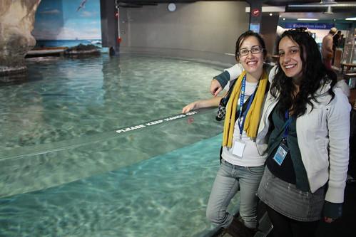 250/365 - Aquarium Adventuring