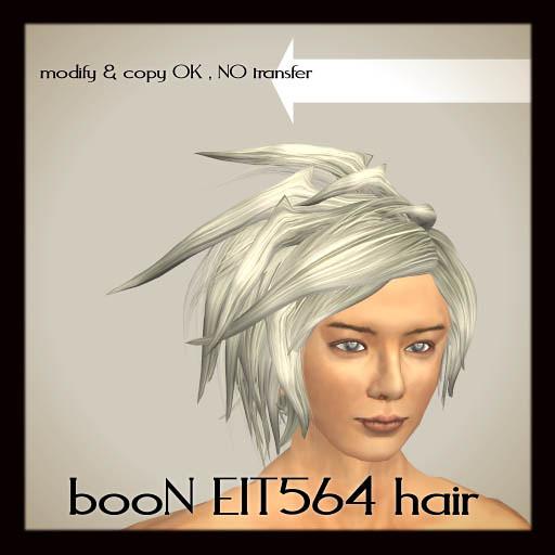 booN EIT564hair