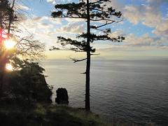 Vancouver Island  -  Westwood Lake