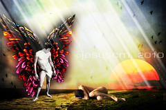 there must be an angel (to help you...) (jesuscm) Tags: light sun luz sol birds angel way camino angeles © aves textures pájaros angels fallen texturas caído jesuscm graphicmaster koppdelaney artuniinternational
